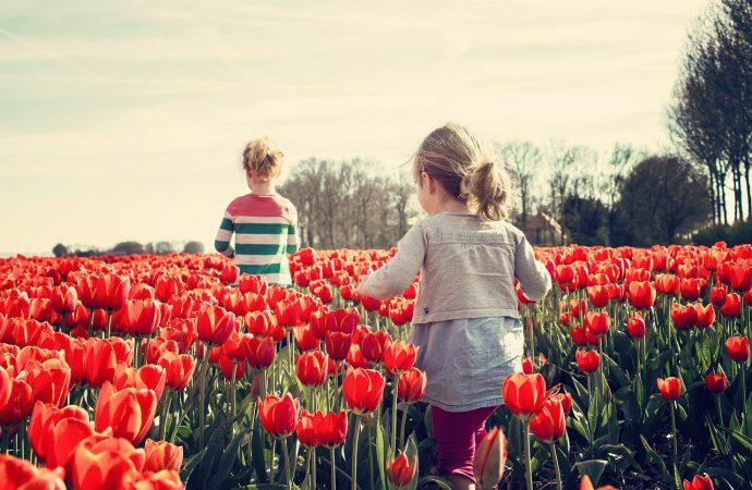 Quelles sont les meilleures distractions pour les enfants?