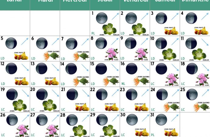 Calendrier lunaire Octobre 2020 : jardiner avec la lune