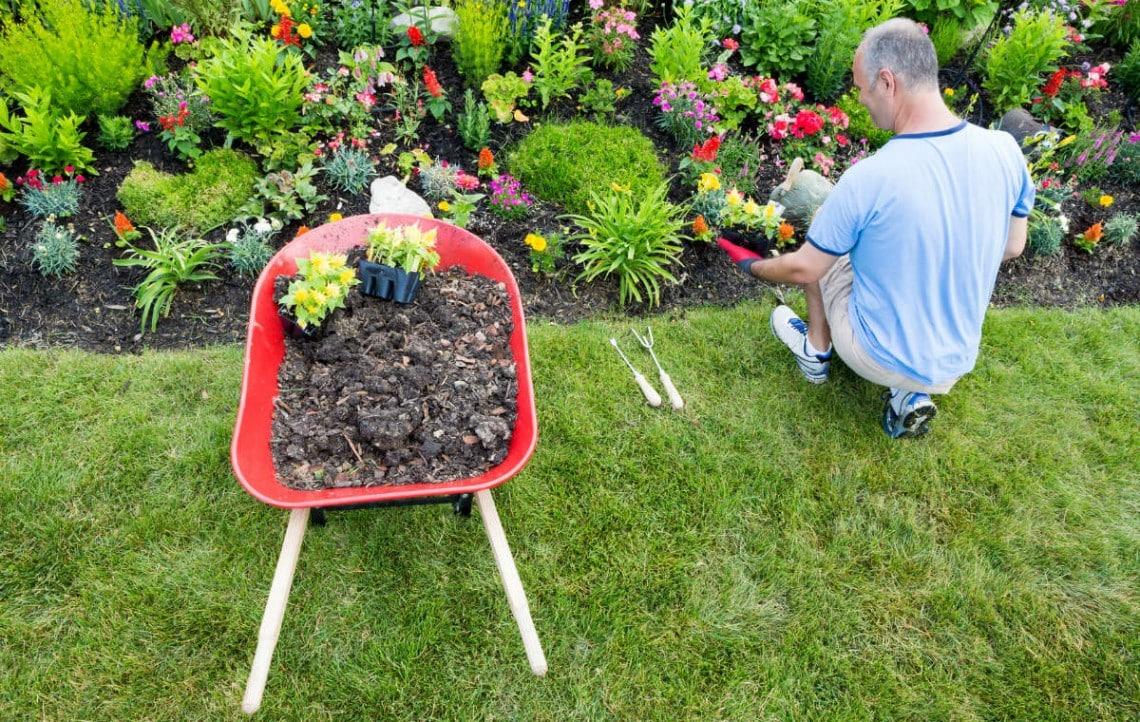 Une récolte de fleurs par un paysagiste