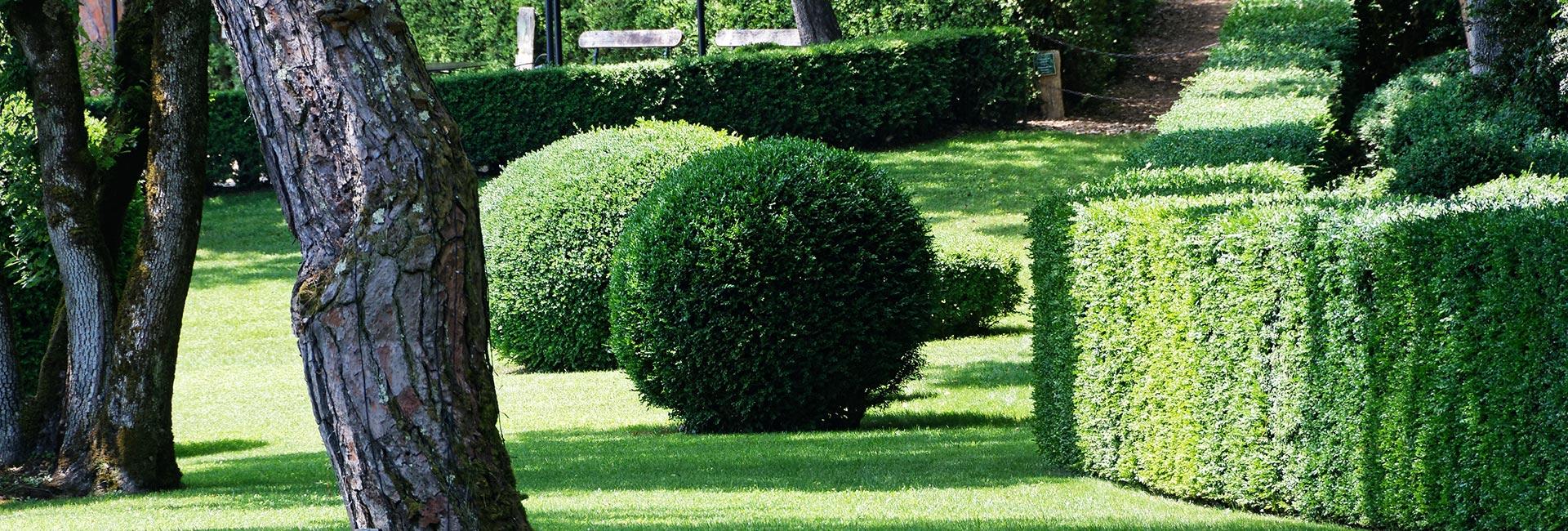 Réussir à bien entretenir un jardin