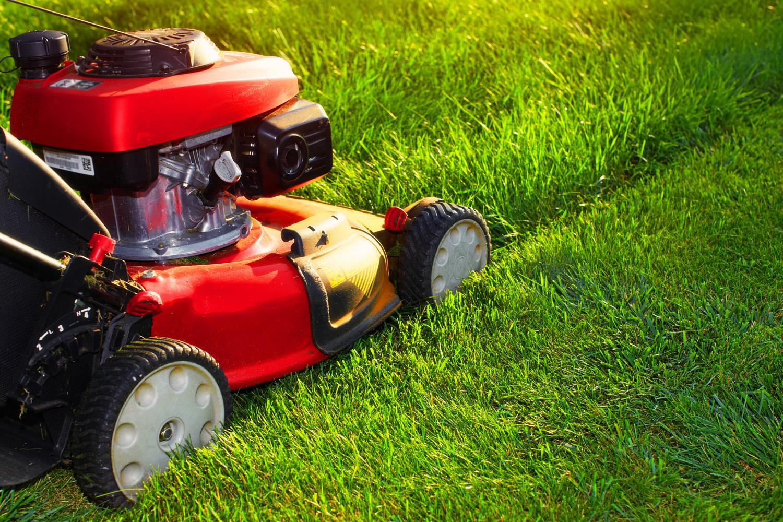 Le matériel pour entretenir un jardin