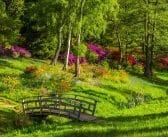 Embellissez Votre Jardin Avec Une Clôture Verte Synthétique