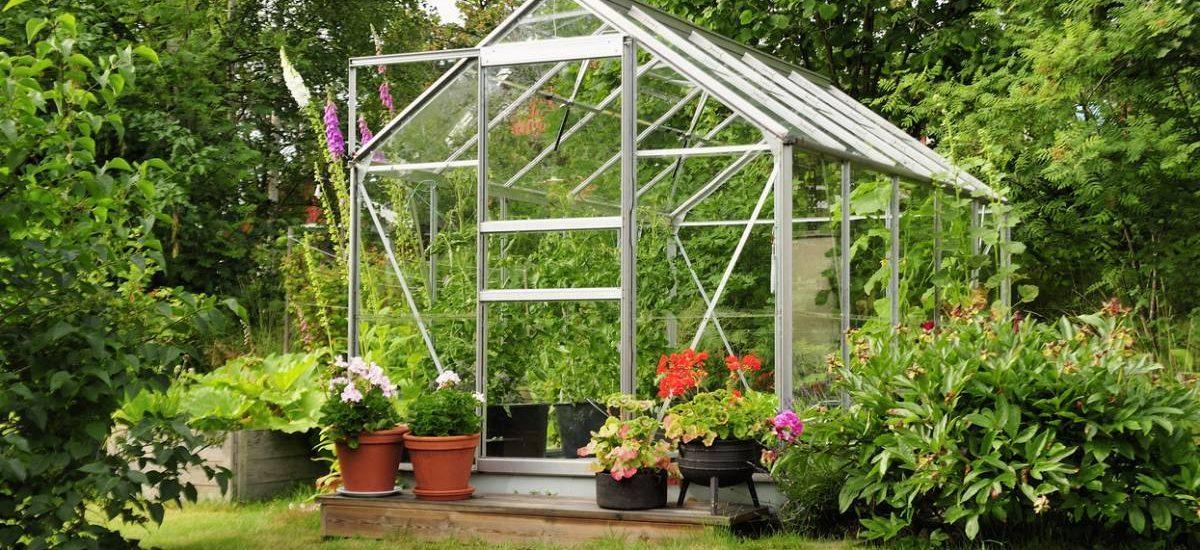 Mon petit blog jardin