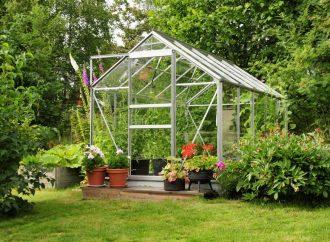 Cultiver des légumes toute l'année grâce aux serres de jardin