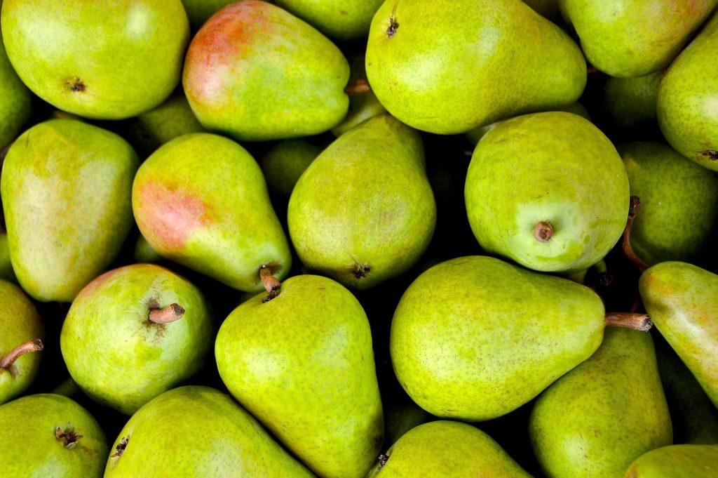 Taille des arbres fruitiers : conseils pour la réussir