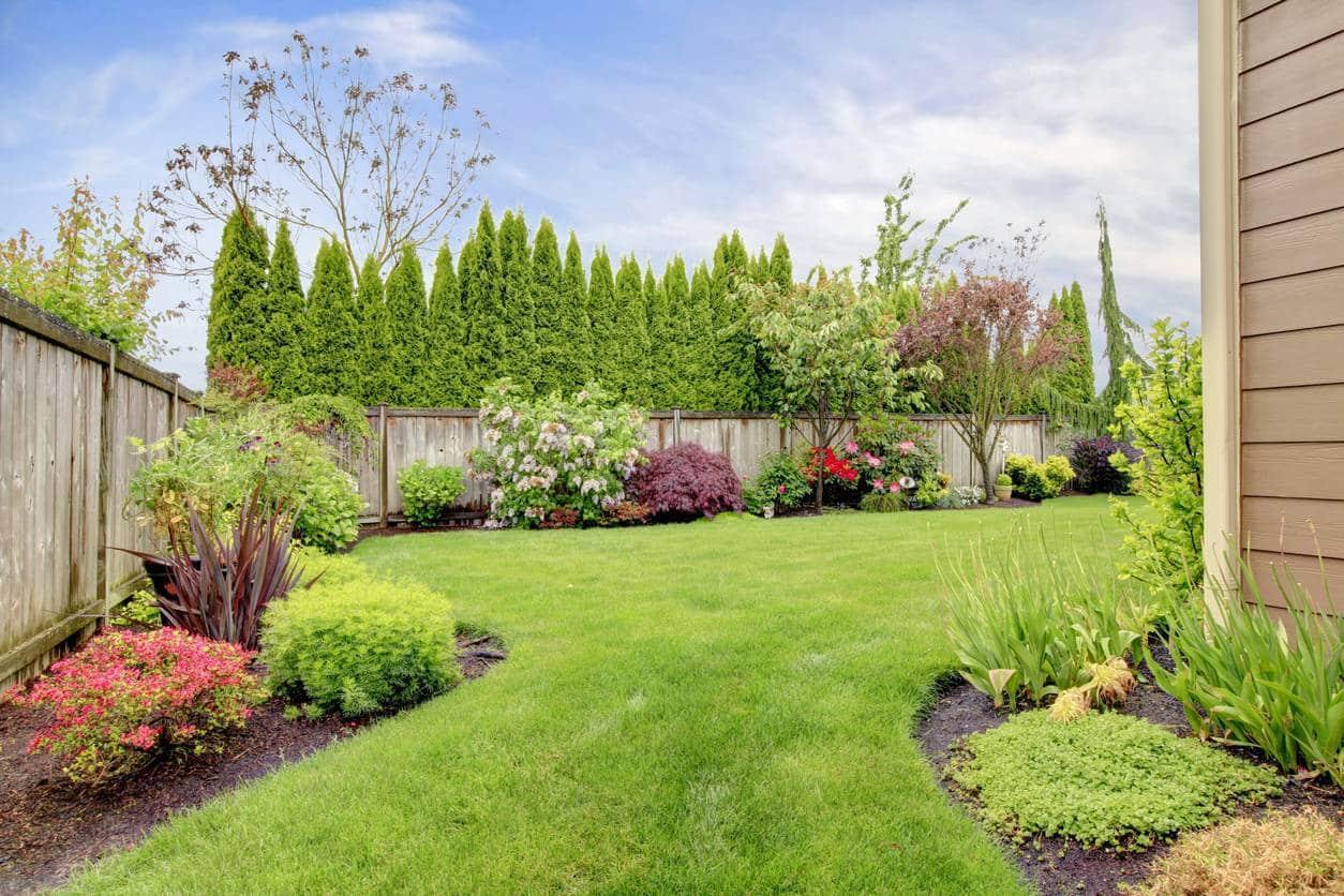 tonte jardin