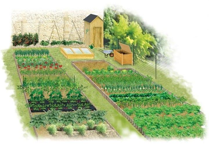 Potager conseils pour optimiser l espace - Comment faire un beau jardin potager ...