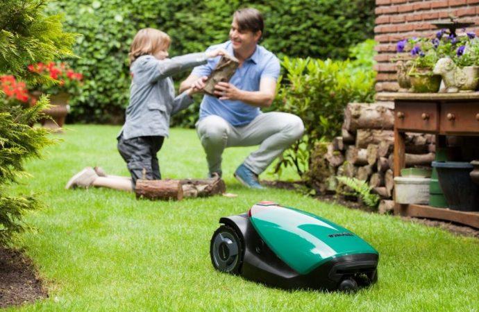 Entretien de la pelouse : quels outils utiliser ?