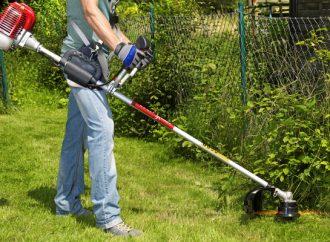 Automne : comment bien entretenir son jardin ?